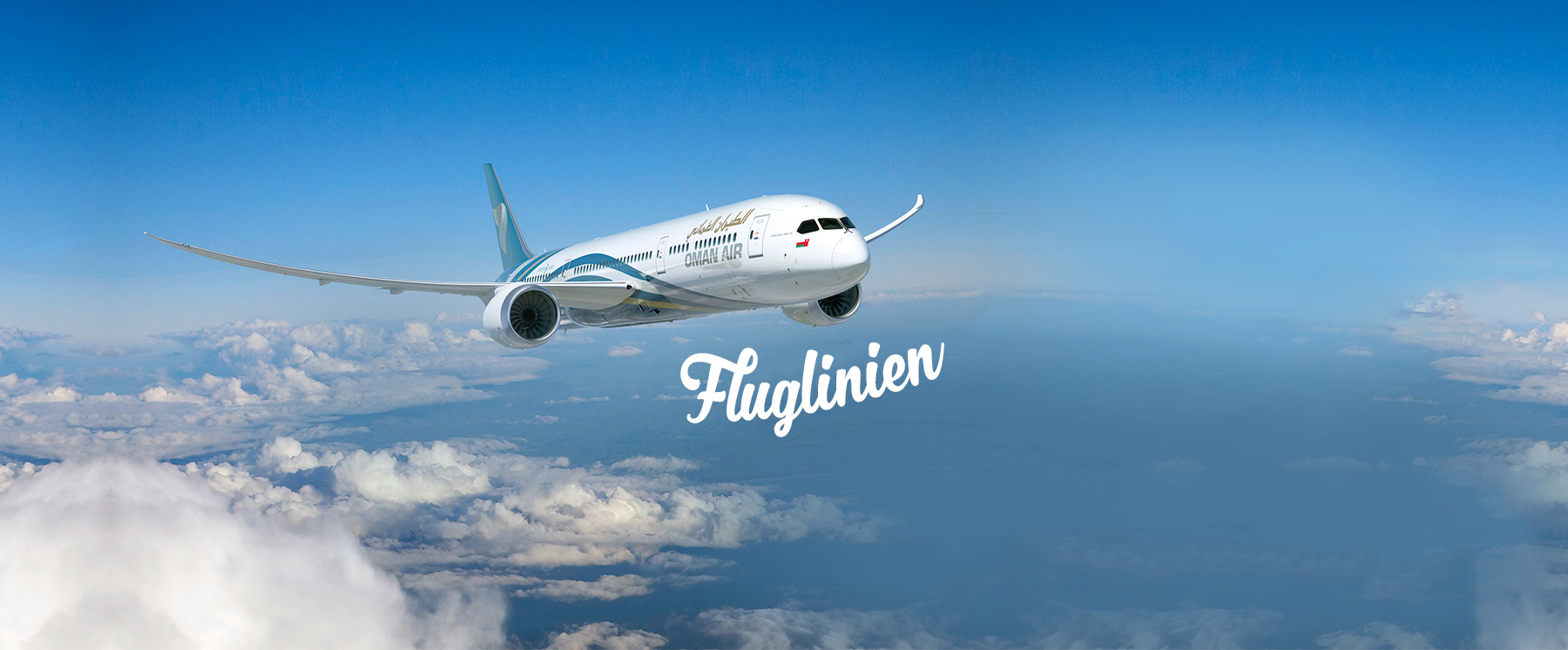 Fluglinien